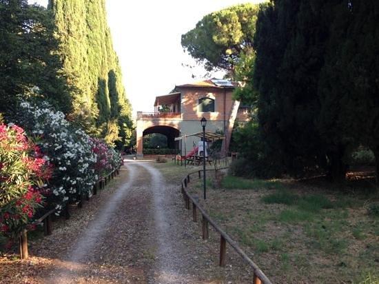 Villa i Tigli: vista dal giardino