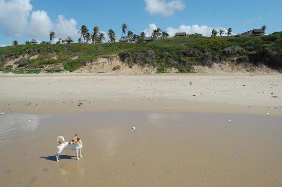 Bonito Bay: Teil der Anlage vom Strand aus gesehen