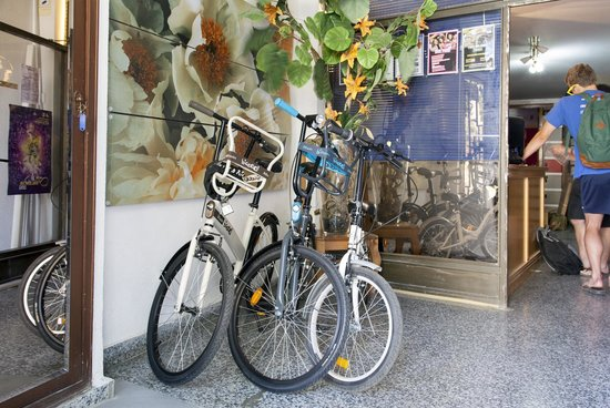 My Place Low Cost Hostel Valencia: Bike Rental