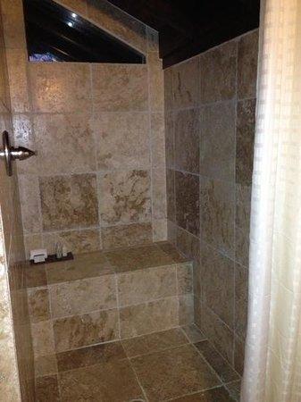 Renaissance St. Croix Carambola Beach Resort & Spa: Roomy stone shower.
