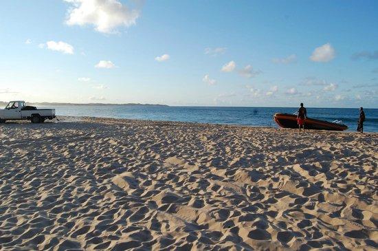 Diversity Scuba Tofo : Der Zodiak wird aus dem Meer gezogen