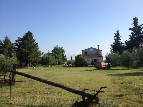 Agriturismo Il Vecchio Maneggio: le jardin et la maison d'hôtes