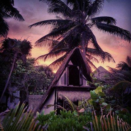 Playa Selva : At twilight