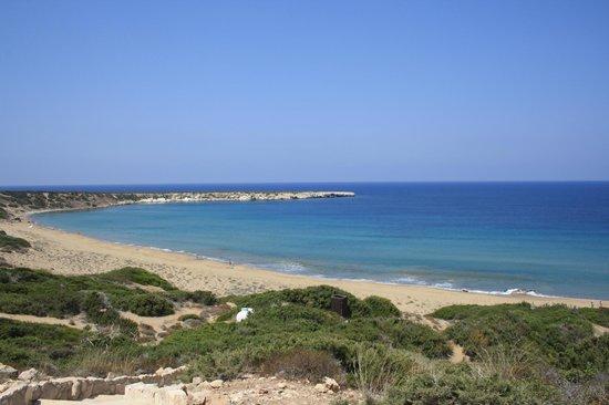 Lara Bay Turtle Conservation Station : La spiaggia