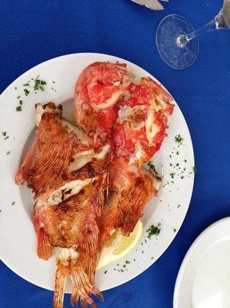 Restaurante Ca'l Patro: Cap roig