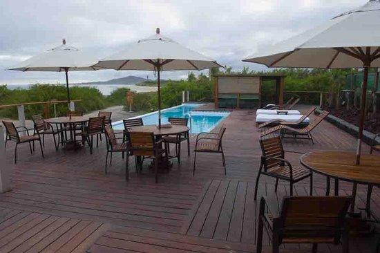 Iguana Crossing: Hotel pool