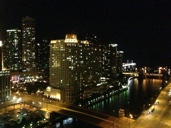 Hyatt Regency Chicago: Gorgeous view from room