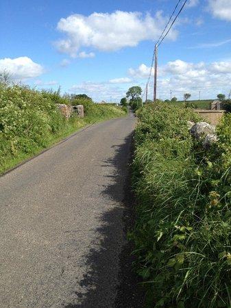 The Knockmore Road, home of Lisdovogue House