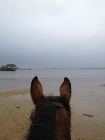 Lisdovogue House: Horse riding to Loch Con
