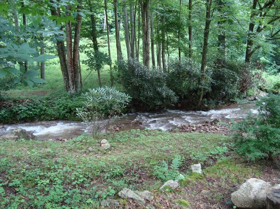 The Buck House Inn on Bald Mountain Creek: View of the creek beside the house