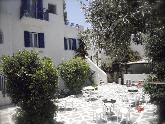Alexandros apartments: Backyard