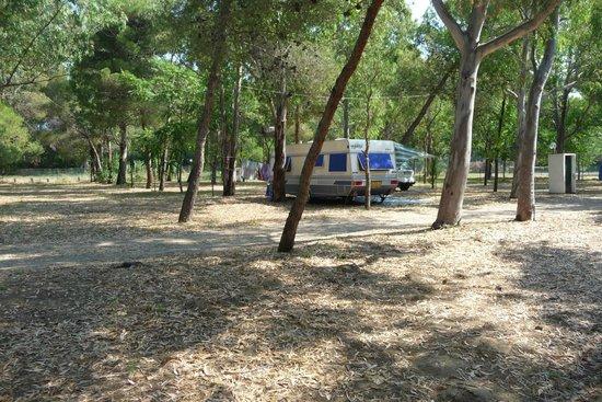 Camping Village Uria: ben ombreggiato
