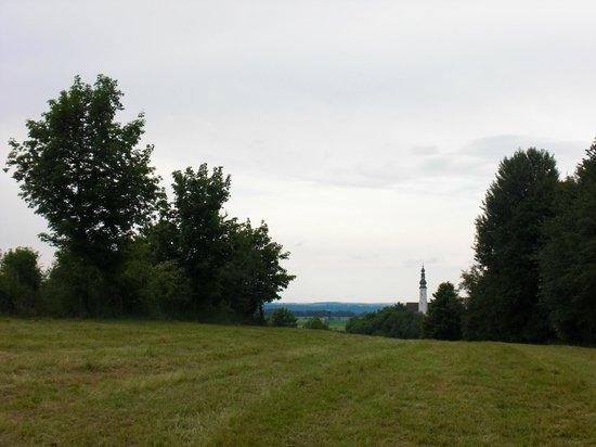 Vitalhotel Therme Geinberg: Landschaftserkundung