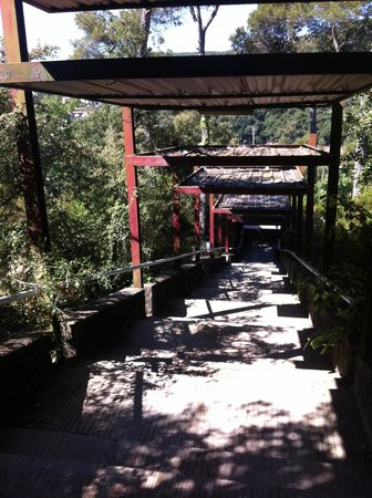 INOUT Hostel: Path from pool to restaurant.