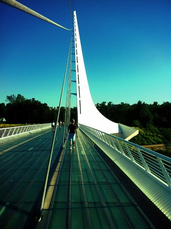 Holiday Inn Hotel and Convention Center: Nearby attraction that is worth the visit with your family ... Sundial Bridge and Turtle Bay Par