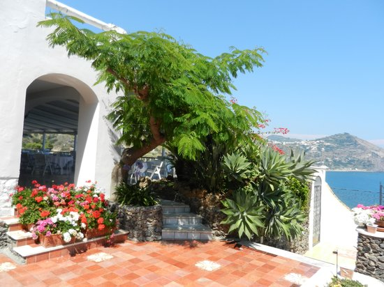Hotel Terme San Michele : L'ingresso