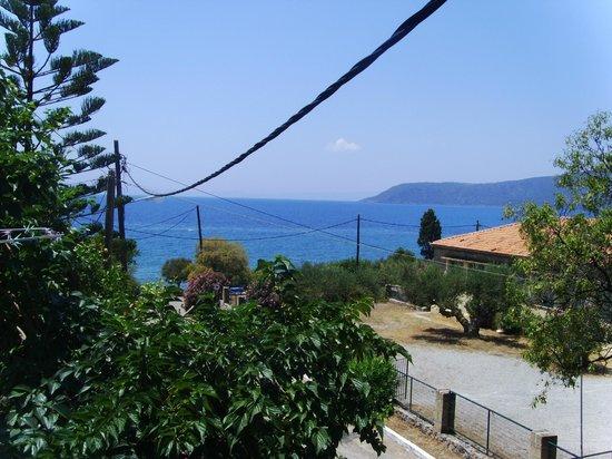O Kipos tis Skardamoulas : view from studios no 1,2