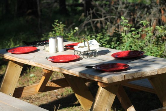 Swan Mountain Outfitters Day Tours: TABLE ALL SET