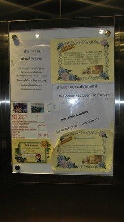 SPB Paradise: information