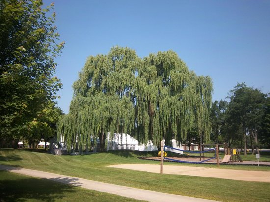 Chicago Marriott Lincolnshire Resort : Grounds of resort