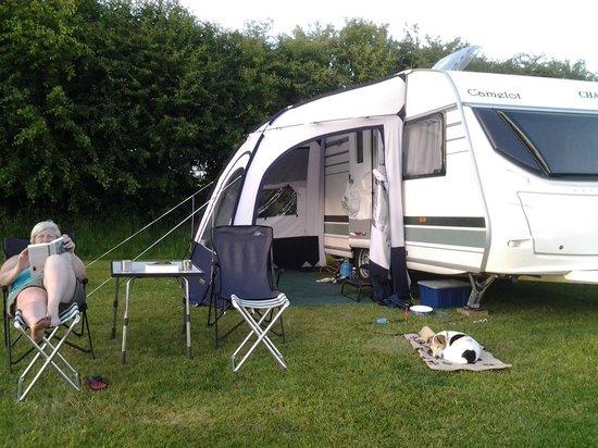 Blarney Caravan & Camping Park: grass pitch