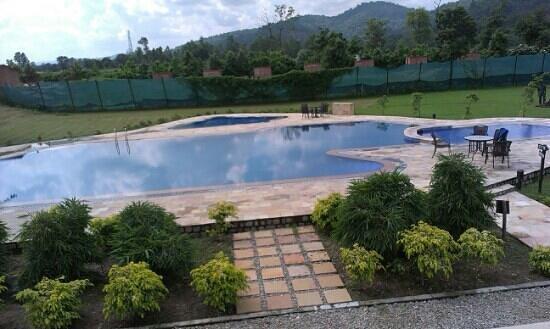 The Golden Tusk: pool