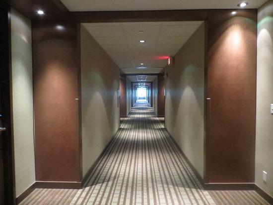 Hotel Casino New Brunswick : Hotel lobby