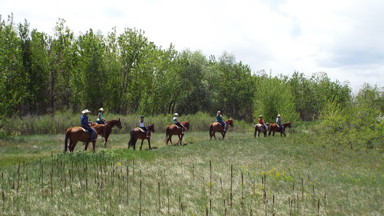 12 Mile Stables: Trail Rides