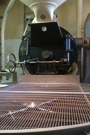 Cappuccino & Espresso Course & Tour: Macchina per la tostatura del caffè