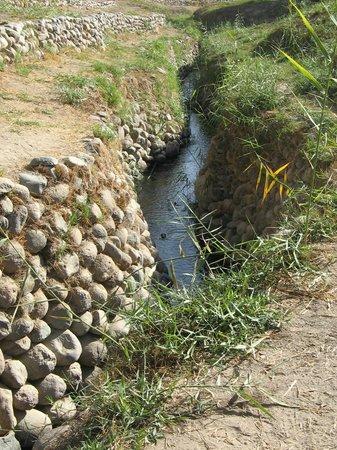 Casa Andina Standard Nasca: Nazca aqueduct at Cantalloc, outside town