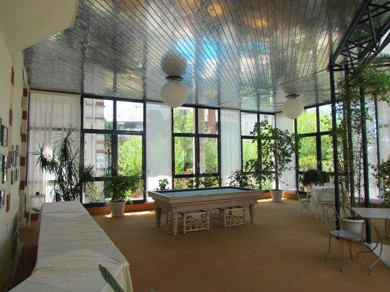 Residence Villa Regina: salle de billard et lecture