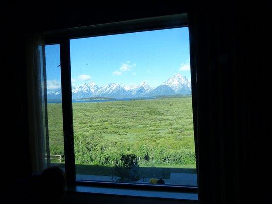 Jackson Lake Lodge : great views
