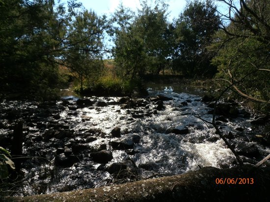 Pleasant Places Guesthouse: River view on the hike to the Potters House