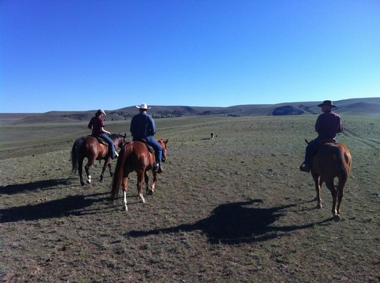 Badger Creek Ranch: Nice ride