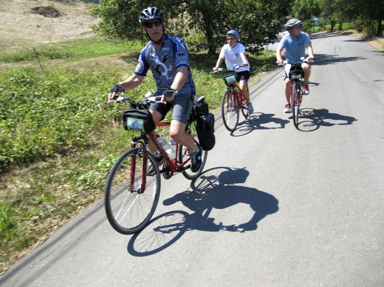 Wine Country Bikes: Some pix of our rides