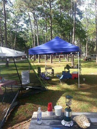 Crooked River State Park : looking out into the campground..