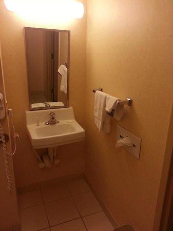 Baymont Inn & Suites Pensacola: bathroom