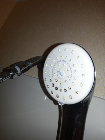 Baymont Inn & Suites Pensacola: mildew caked shower head