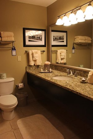 BEST WESTERN Vista Inn: bathroom
