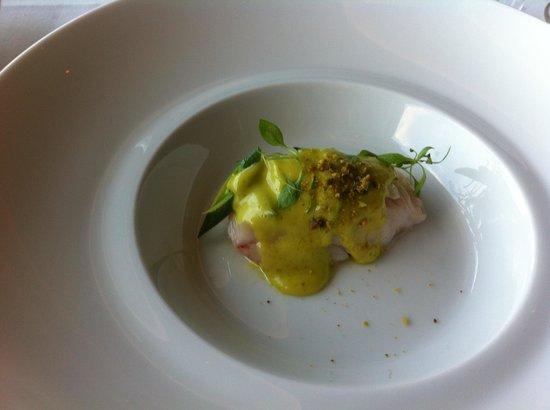 TOYA : Merlu et sa mayonnaise aux pistaches torréfié .