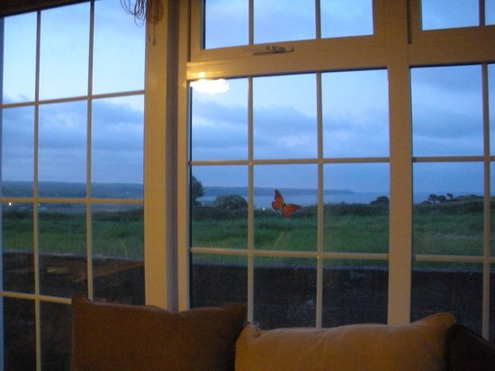 Duncrone B&B: View from the dining area at 11pm!