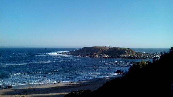 Isla Los Pinguinos Cachagua