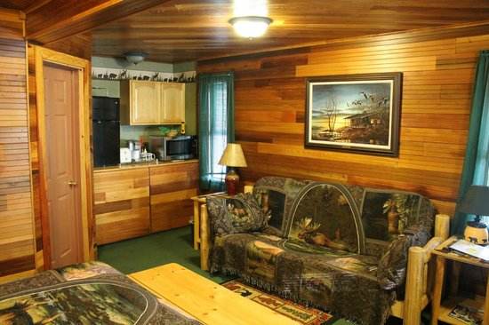 Talkeetna Denali View Lodge & Cabins: Couch/Coffee of Cabin Room