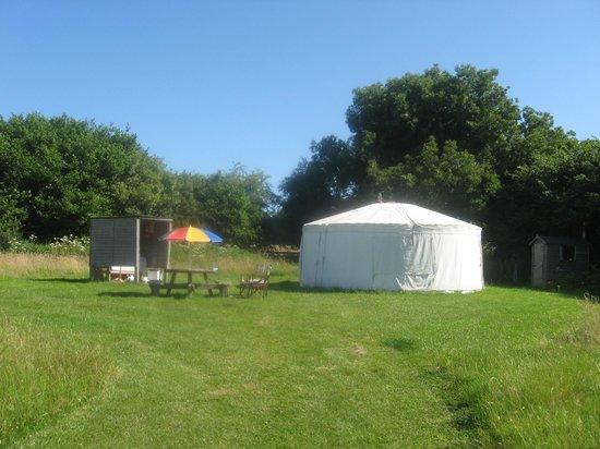 Cuckoo Down Farm: Bluebell yurt
