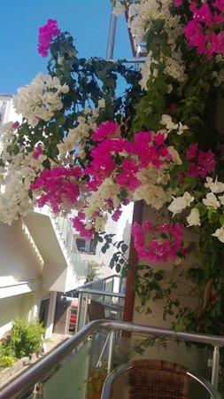 Marin-A Hotel : Sval balkong