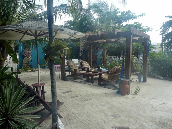 Changes In Latitudes Bed and Breakfast : Outdoor patio area with hammocks, cornhole game, bikes, and lockers for dive and snorkel gear
