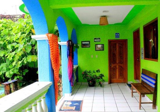 Iguana Hostel: Colours of the Iguana