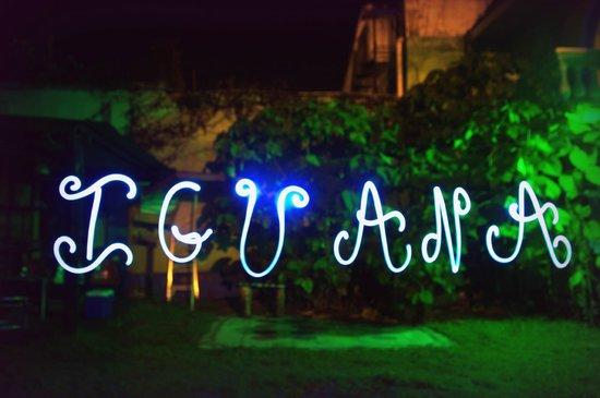 Iguana Hostel: Iguana by night