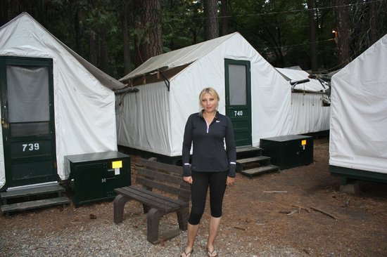 Tienda de alrededores picture of half dome village for Half dome tent cabins