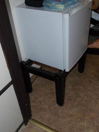 Igalo, Montenegro: Fridge in the room/Frizider u sobi